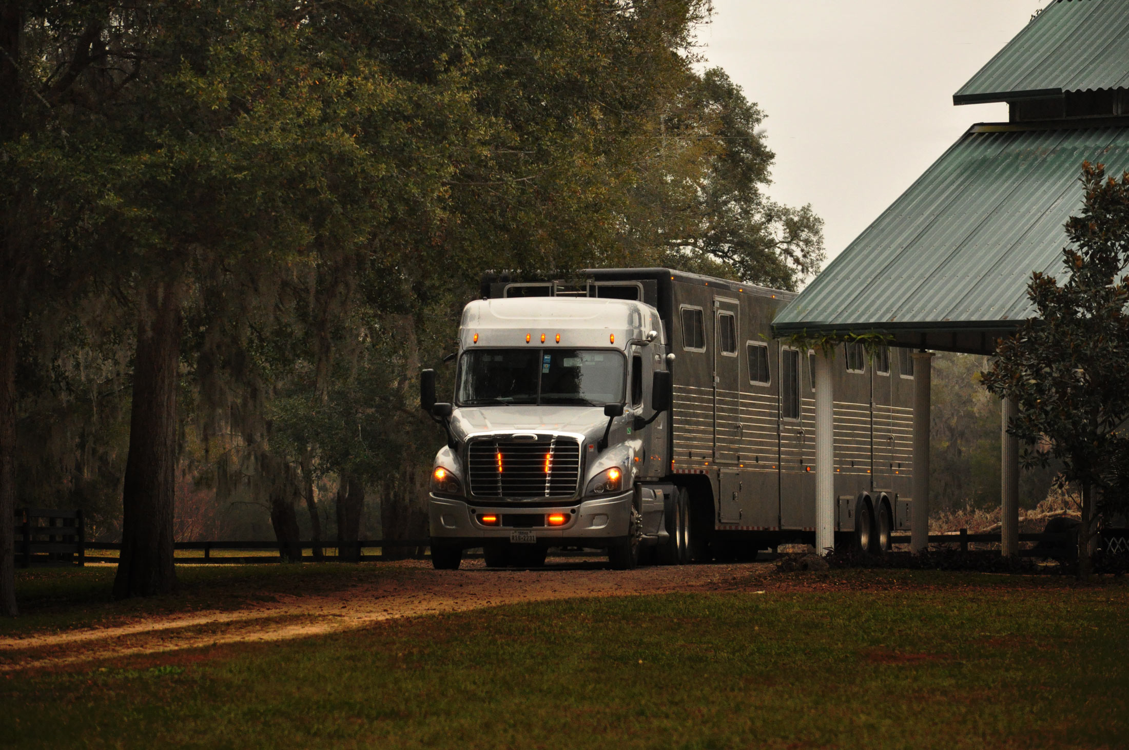 Equine Express | America's Most Trusted Nationwide Horse
